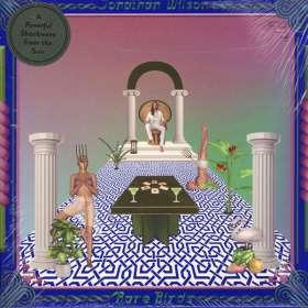 Jonathan Wilson: Rare Birds (180g) (Limited-Edition) (Gold Vinyl) (exklusiv für jpc mit Stoffbeutel), 2 LPs