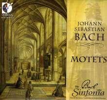 Johann Sebastian Bach (1685-1750): Motetten BWV 159,225-230, CD