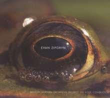 Evan Ziporyn (geb. 1959): Frog's Eye, CD