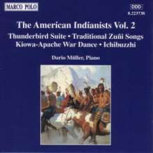 Dario Müller - The American Indianists 2, CD