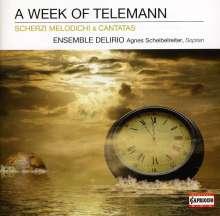 Georg Philipp Telemann (1681-1767): Kantaten & Scherzi Melodichi, CD