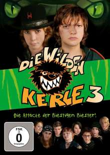 Die wilden Kerle 3, DVD