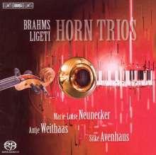 Johannes Brahms (1833-1897): Horntrio op.40, SACD