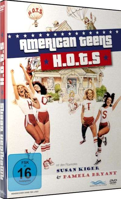 Dvd American Teen 17